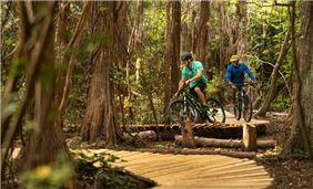 Montain Bike Trail